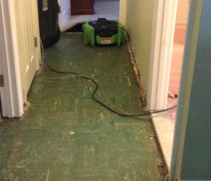 Pipe Bursts in Dining Room in Framingham Home After