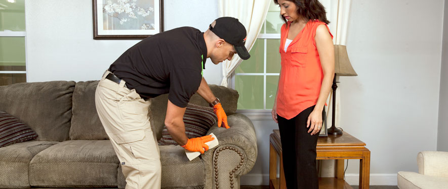 Framingham, MA carpet upholstery cleaning
